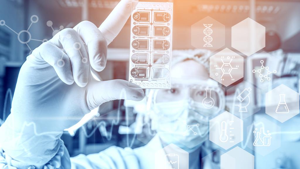 IT Applications in Bioinformatics